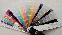 Exterior Paint Color Consultant